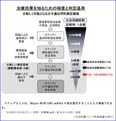 慢性 骨髄 性 白血病 治療