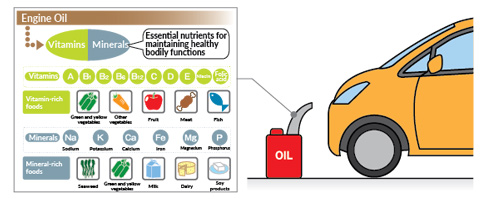 The role of nutrients and nutrient consumption | Otsuka