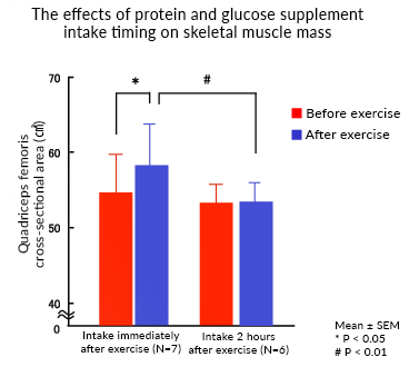 The effects of protein and glucose supplement intake timing on skeletal muscle mass