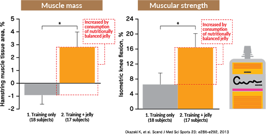 Muscle mass / Muscular strength