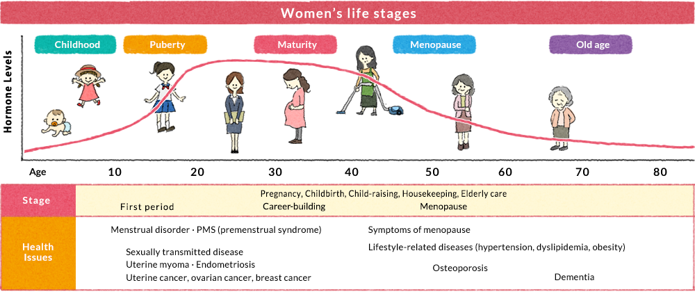 Women's life stages