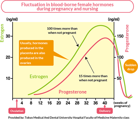 a86a8a8982655 Fluctuation in blood-borne female hormones during pregnancy and nursing